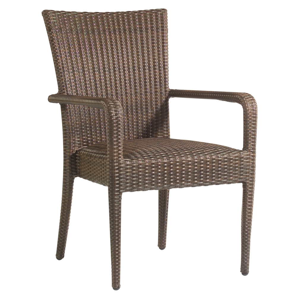 Woodard All Weather Padded Dining Arm Chair - S593801