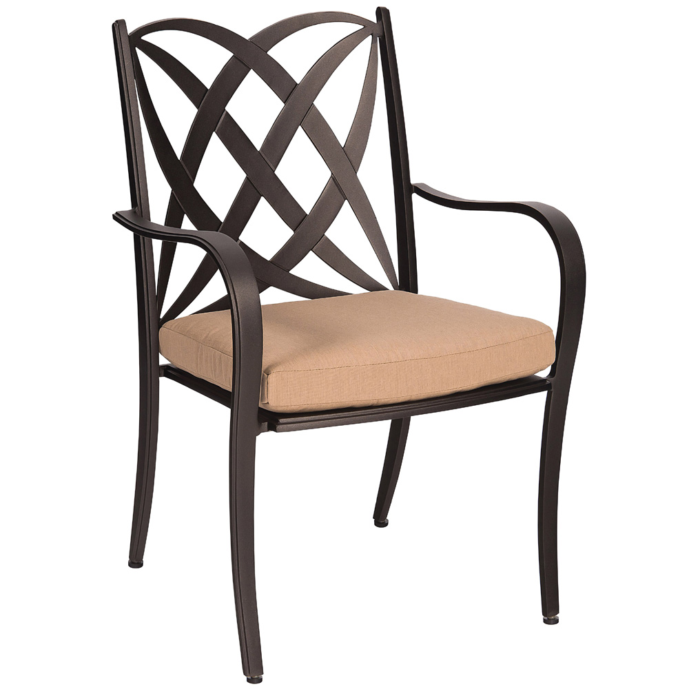 Woodard Apollo Dining Arm Chair with Cushion - 7U0417ST